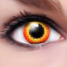 Ork Kontaktlinsen