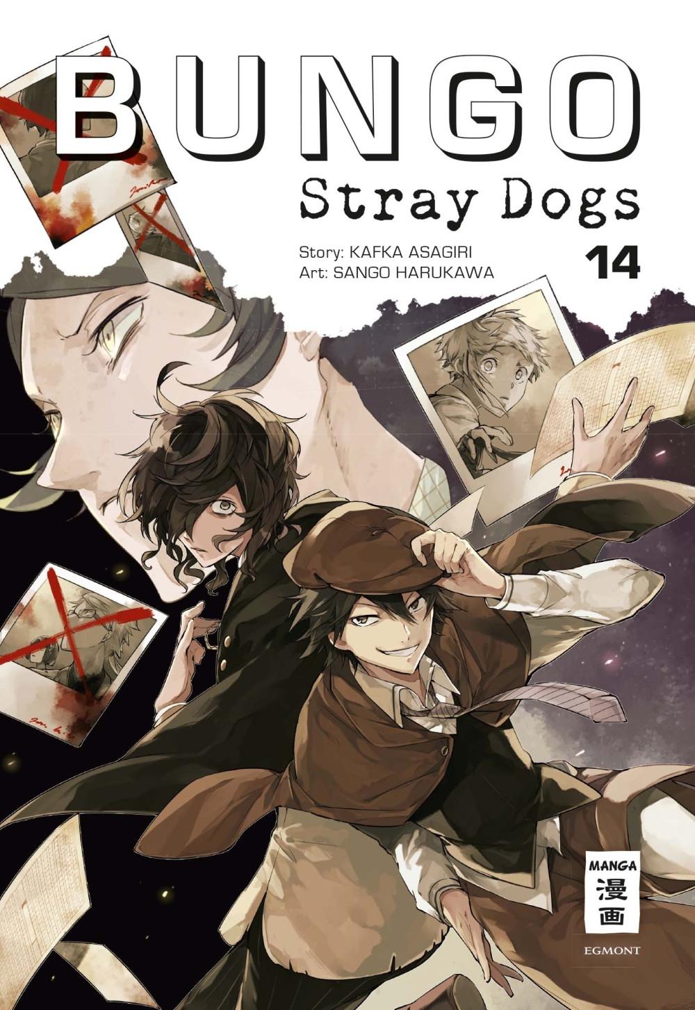 Bungo Stray Dogs 14 Manga