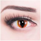 Manticor Kontaktlinsen